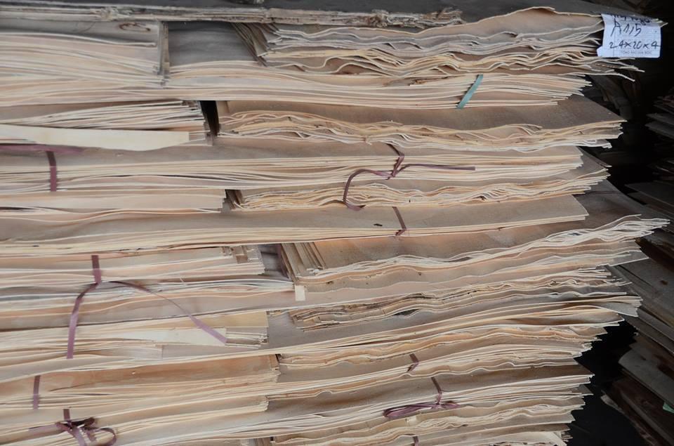 Ván lạng để làm gỗ Plywood