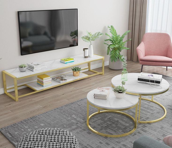 kệ tivi và bàn trà inox màu đơng giản